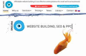 case studies dimaco web website design and website building