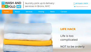 wash and fold me laundy case studies